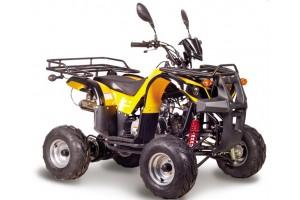 Квадроцикл АВМ Ninja 110 New