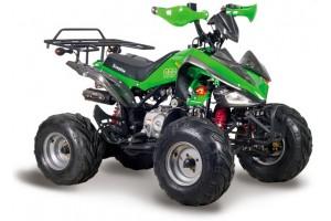 Квадроцикл АВМ Scorpion 110