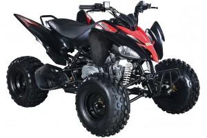 Квадроцикл АВМ Scorpion 125М