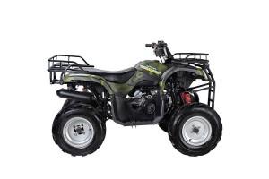 Квадроцикл WELS ATV Purga 170