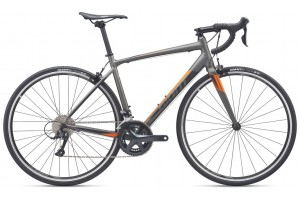 Giant Contend 1 2019
