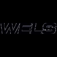 Скутеры Wels